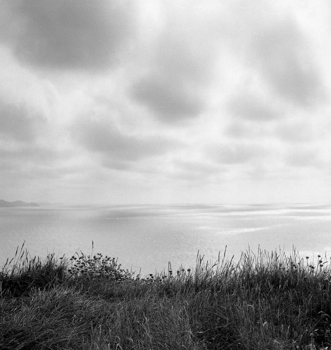 Atlantic, Devon © Stewart Weir 2004