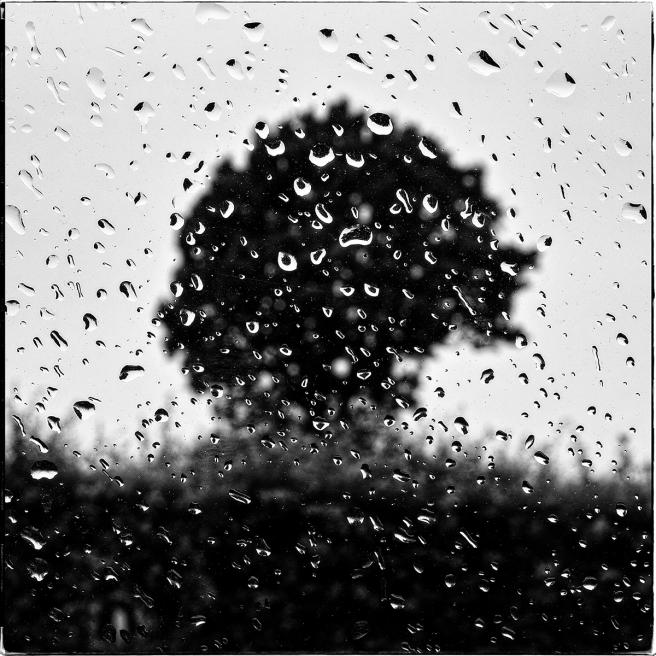 Rain_GlassLR